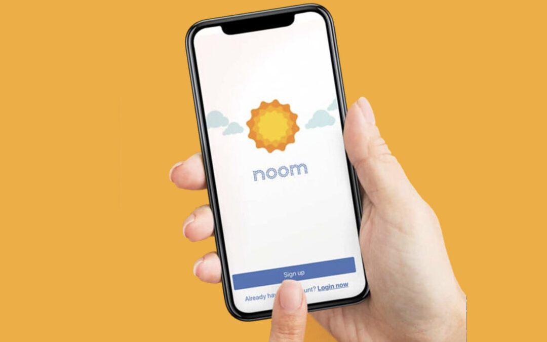 Noom or not to Noom? That is the question!