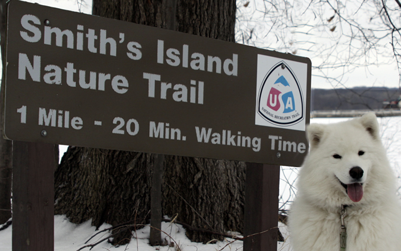 QC Winter Hikes: Eagle watching at Smith's Island